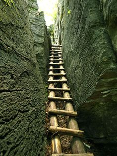 See these steps? Climbed 'em! Cup and Saucer Trail Manitoulin Island, Ontario, Canada (Bruce Pen.)