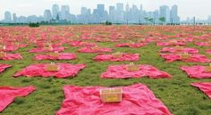Ikea lays out thousands of picnic blankets in Central Park to support store promotion.