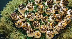 We'll completely manage your orders and ensure delivery on time and to your specifications – we take the stress out of corporate catering Auckland. Corporate Caterers, Catering Business, Corporate Events, Catering Services, Wolf, Cheesecake, Stress, Delivery, Cheesecakes