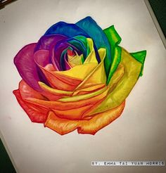 Rainbow rose artwork:) Personally hand drawn. #colorrealism #color  #rosetattoo…