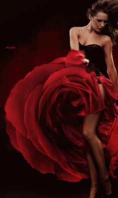 marisel@reflexiones.com: PODRÁN AMARTE MIL VECES...