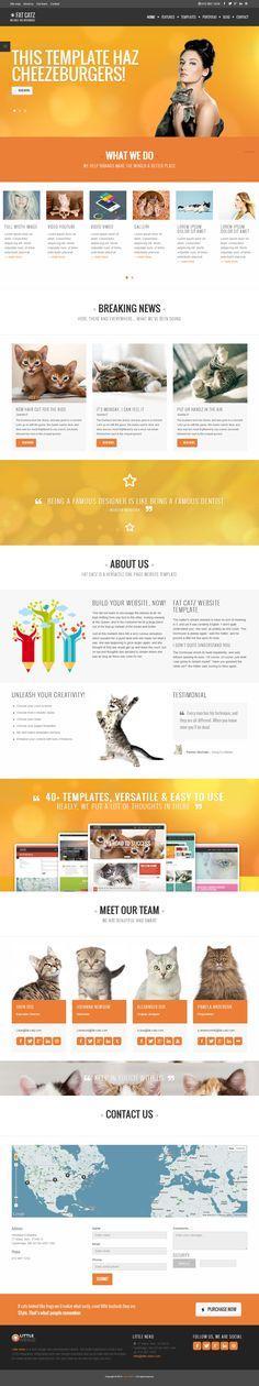 Fat Catz is Premium Responsive Multipurpose HTML5 Template. Retina ready UI. Twitter Bootstrap 3 framework, Little Neko framework.