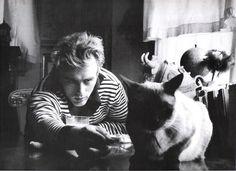 james dean + cat
