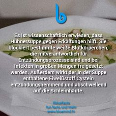 37 unfassbare Fakten, die du noch nie gehört hast There are 37 unfathomable facts that you surely did not know yet. Take a look and convince yourself of our latest Bluefacts. Health Facts, Health Quotes, Health Tips, Good To Know, Did You Know, Told You So, Useless Knowledge, Unbelievable Facts, Health Logo