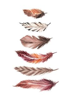 Bohemian Feathers Art Print by Casey Saccomanno