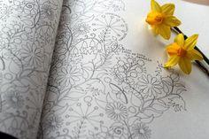Волшебные раскраски Джоанны Басфорд - Ярмарка Мастеров - ручная работа, handmade