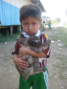 Amazing. A kid with his sloth