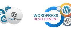 How WordPress Development Service Can Enhance Your Website Comprehensively