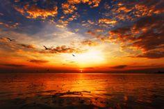 Orange Paint Colors - Interior & Exterior Paint Colors For Any Project Orange Paint Colors, Popular Paint Colors, Sunset Pictures, Best Vacations, Beautiful Sunset, Beautiful Places, Beautiful Pictures, Exterior Paint, Professor