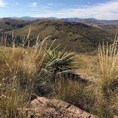 This photo is one of many I took at Davis Mountains State Park!  The park is about 30 minutes from Marfa and well worth the drive. This is the scenic view from Skyline Drive Trail. #davismountains #tpwd #texasparks #vista #texas #mountains #rugged #outdoors #instatravel #wanderlust #beautifulview #travelphotography