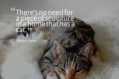 Theres no need for a piece of sculpture in a home that has a cat. Wesley Bates #dogs #cats
