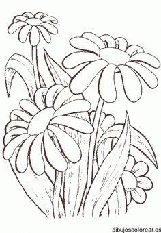 Kwiaty z netu - Mirka Bień - Picasa Web Album Wood Burning Stencils, Watercolor Sunflower, Floral Drawing, Flower Doodles, Stained Glass Patterns, Paint Designs, Fabric Painting, Flower Patterns, Painted Rocks