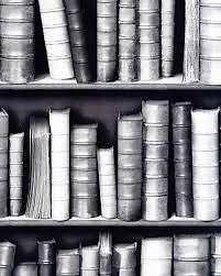 Galerie Bluff Black And White Bookcase Effect Feature Wallpaper F92309 Ebay