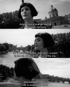 Amelie - directed by Jean-Pierre Jeunet, musical score by Yann Tiersen. Amelie, Movies Quotes, Tv Quotes, Indie Movies, Romance Quotes, Mood Quotes, Funny Quotes, Movies Showing, Movies And Tv Shows