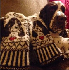Ravelry: Cocker Spaniel Mittens pattern by Connie H Design Mittens Pattern, Knit Mittens, Mitten Gloves, Knitted Hats, Spaniel Puppies, Cocker Spaniel, Small Knitting Projects, H Design, Dog Crafts