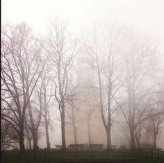 Fog. Mist.