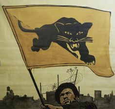 Chris Stain – Black Panthers Serie (2013)