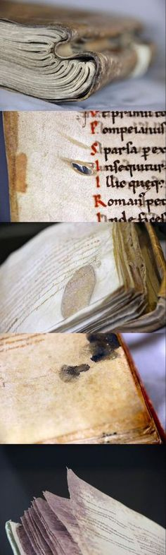 Series by Erik Kwakkel: The Beauty of the Injured Book, from medieval manuscripts in the Leiden, Universiteitsbibliotheek collection: 1.Bad Back: 15th century 2.Sliced: c. 1100 3.Scar Tissue: c. 1000 4.Touched by a Human: 12th century 5.Mouldy skin: 11th century