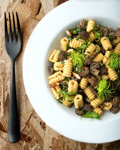 Gifts of the pines: Homemade pasta made with pine pollen, served with pine nuts, morel mushrooms, wild onions and young spruce tips. Pasta Recipes, Real Food Recipes, Healthy Recipes, Healthy Food, Food Tips, Food Ideas, Mushroom Recipes, Vegetable Recipes, Spruce Tips
