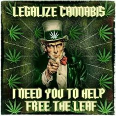 America was founded on freedom. Some people use marijuana to get high, some use it to stop pain. A choice you should have in America!