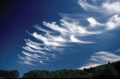 Very pretty - cirrus clouds - like brush strokes in the sky