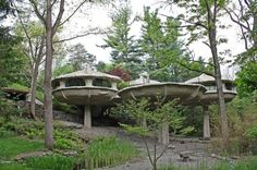 """Mushroom pod house designed by architect James H. Johnson, he was inspired to design this house by looking at """"a stem of Queen Anne's lace in a Coke bottle"""" Gaudi, Crazy Houses, Cob Houses, Mushroom House, Unusual Homes, Hotels, Architect House, Design Moderne, Queen Anne"""
