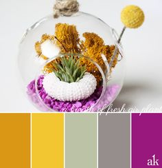 an air-plant-inspired color palette // gold, yellow, sage, gray, purple // terrarium by Urban Anonymous