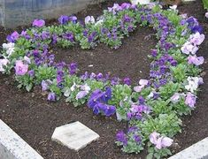 Picture result for grave planting of all saints planting autumn picture … - Garden Care Garden Care, Rose Plant Care, Grave Decorations, Cemetery Flowers, Planting Roses, Fairy Garden Accessories, Fall Plants, Fall Pictures, Autumn Garden