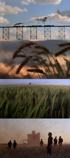 "moviesinframes: "" Days of Heaven, 1978 (dir. Terrence Malick) By Marili Zarkou "" Cinematic Photography, Film Photography, Advanced Photography, Photography Sketchbook, Film Composition, Movie Screenshots, Movies And Series, Movie Shots, Beautiful Film"