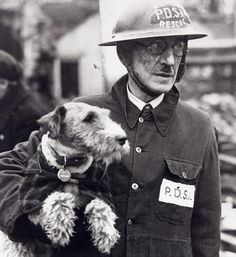 BEAUTY: WIRE HAIRED FOX TERRIER Pioneered a special squad to locate and rescue trapped animals despite never being trained for a wartime role.  Her owner Bill Barnett, a PDSA superintendent, used to take her on patrol with him when he toured the East End with a Civil Defence unit. She rescued 63 animals overall.