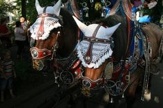 typical bavarian brewery horses