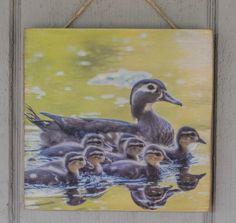 Wood Duck Ducklings Wildlife Art Wood Print by Karen King USA