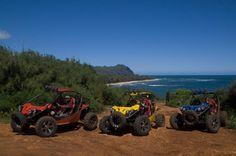 Best Off-Road Tour of Kauai Waterfalls $151,  4hrs , 8am, 12pm