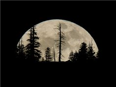 The time period between full moons is days. However, the return to perigee is every days. 2012 Moon at Soda Springs California by George Lamson Moon Pictures, Nature Pictures, Moon Pics, Over The Moon, Stars And Moon, Beautiful Moon, Beautiful World, Dream Moon, Soda Springs