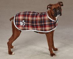 Shop for Zack & Zoey Nor'easter Green Blanket Dog Coat. Get free delivery On EVERYTHING* Overstock - Your Online Dog Supplies Store! Boxer Dogs, Pet Dogs, Pets, Large Dog Coats, Dog Coat Pattern, Dog Blanket, Blanket Coat, Green Blanket, Dog Raincoat