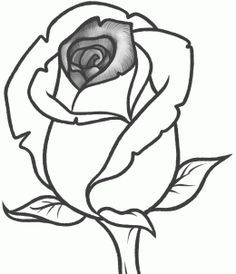 how to draw a rose bud, rose bud step 8