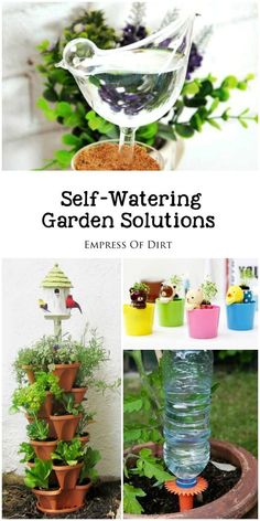 If you're going on vacation or simply do not have time to water your plants on a regular basis, you may like these self-watering garden solutions. There's watering globes, probes, spikes that fit on soda bottles, as well as self-watering containers and irrigation systems. They all deliver the water gradually to the roots of your plants, just the way they like it. #sponsored