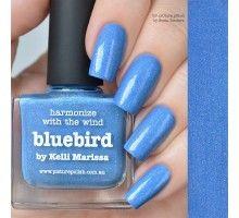 Picture Polish Bluebird