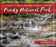 From dramatic coastlines to epic hikes, stunning waterfalls, and even covered bridges, Fundy National Park highlights the best sights New Brunswick, Canada has to offer. If there is one place tha East Coast Travel, East Coast Road Trip, East Coast Canada, Stuff To Do, Things To Do, New Brunswick Canada, Discover Canada, Canada National Parks, Ocean Day