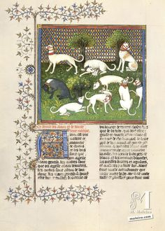 Book of the hunt, Gaston Fébus. 45v. The book of the hunt was written or, rather, dictated to a scribe, between 1387 and 1389 by Gaston Fébus, Count of Foix and Viscount of Bearne, and dedicated to the Duke of Burgundy, Philip II the Audacious. France.