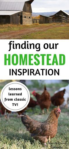 So many great life lessons on frugality, self-sufficiency and homesteading can be found while watching classic TV series.  I put together this list of some of the inspiration that I've drawn from them while running our homestead.