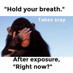 At least you fell into one of these embarrassing situations Radiology Humor, Medical Humor, Work Jokes, Work Humor, Radiography Humor, Medical Radiography, Radiologic Technology, Rad Tech, Tech Humor