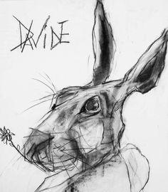 Valerie Davide hare Boswell Rabbit Drawing, Rabbit Art, Animal Paintings, Animal Drawings, Figure Painting, Painting & Drawing, Lapin Art, Scribble Art, Charcoal Art