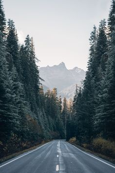 WISH YOU WERE NORTHWEST - expressions-of-nature:   Untitled by Morgan...