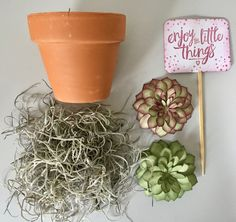 Succulent Garden, Stampin' Up! - Enjoy the little things! - a gift idea