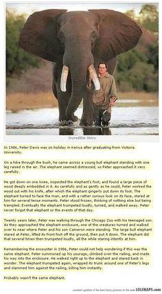 Unbelievable Story