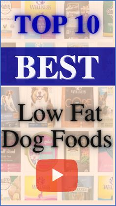 Healthy foods for dogs.According to the Institute of Pet Obesity Prevention, 55.8% of dogs in the USA are obese. The relative lifespan of dogs is being greatly reduced due to the number of diseases caused by obesity.Here is the list of top 10 best low fat dog foods.Follow us for more review videos,UPDATED RANKING MONTHLY! #healthy foods for dogs#dogs food#low fat low carbs recipes#low fat recipes#low fat dinner recipes #low carbs low fat recipes #low fat meals#low fat foods Low Fat Dog Food, Low Fat Dinner Recipes, Best Dog Food Brands, Healthy Foods, Healthy Recipes, Fat Dogs, Dog Food Recipes, Meals, Number