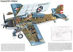 F4F Wildcat Paint Schemes