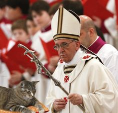 Gus the Wonder Kitty meets Pope Francis