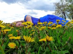 Blue and Yellow field of dreams